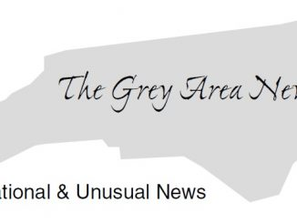 The Grey Area News North Carolina