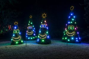 The Singing Christmas Trees at Enchanted Airlie. Source: New Hanover County Parks and Gardens