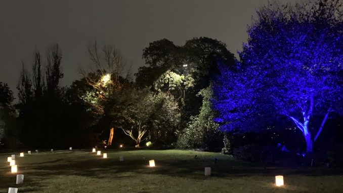 Path at Moonlight in the Garden. Photo: Nadia Ethier