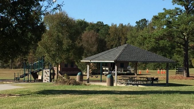 Playground and picnic shelter at Pilot Lions Park in Franklin County, near the Wake County line, Zebulon, NC. Photo: Kay Whatley