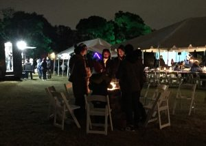 View across Marshmallow Garden showing fire pits, food trucks, and stage. Photo: Kay Whatley