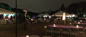 Seating, food trucks, and fire pits at JC Raulston Arboretum. Photo: Kay Whatley