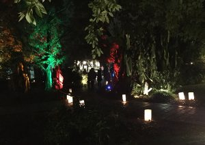One of many paths to take through Moonlight in the Garden. Photo: Kay Whatley