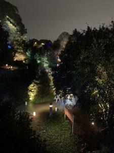 Path lighting at JC Raulston Arboretum. Photo: Nadia Ethier