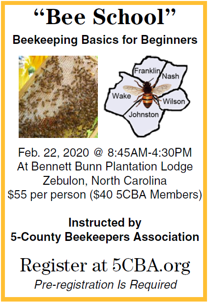 5CBA Bee School February 2020