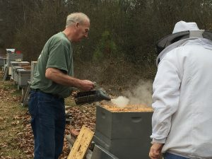 """Tim Huffman smokes the hive before honey """"super"""" (wooden section) is removed to get to the brood super. Photo: Kay Whatley"""