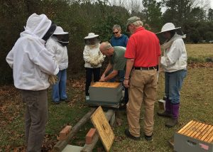 Tim Huffman talks about hive disassembly while other beekeepers look on. Photo: Kay Whatley