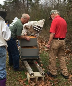 Tim Huffman and Bill Mars putting the hive back together after checking brood. Photo: Kay Whatley