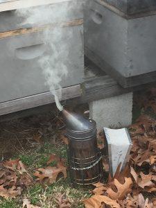 Bee smoker. Photo: Kay Whatley