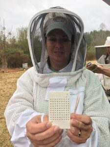 5CBA member Jennifer showing the queen bee numbers. Photo: Kay Whatley