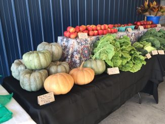 Produce from local farms for sale at market. Photo: Kay Whatley, 2019