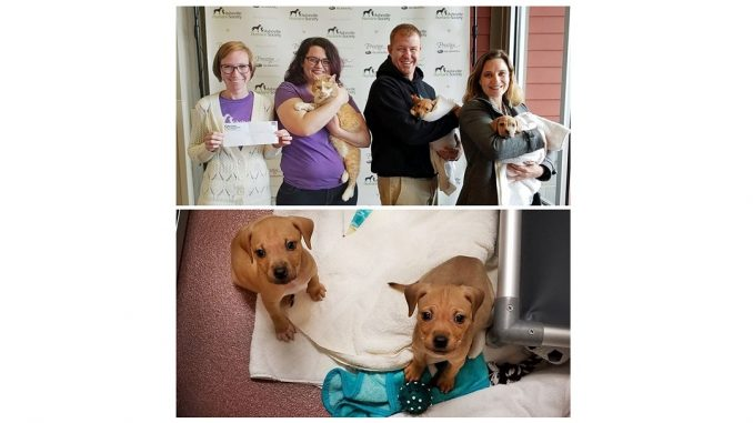 Four Seasons Plumbing presenting their donation to the Asheville Humane Society. Source: Brianna Langley, Orange Orchard PR
