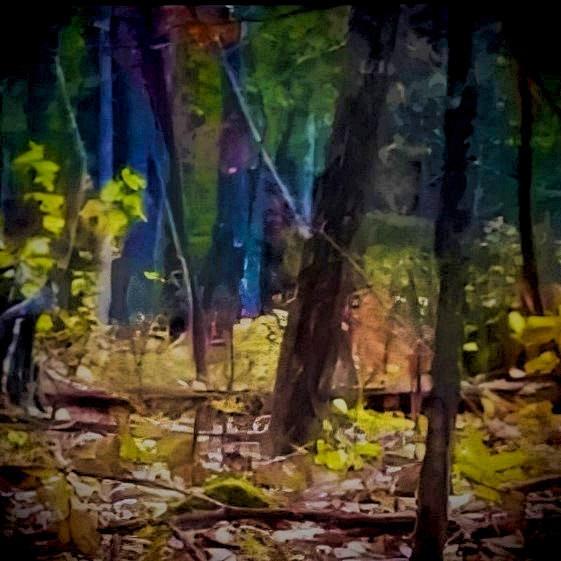 Bill Humphrey's Bigfoot photo, color-altered by digital lab.