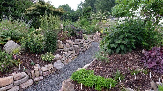 Source: Juniper Level Botanic Garden, Raleigh, NC