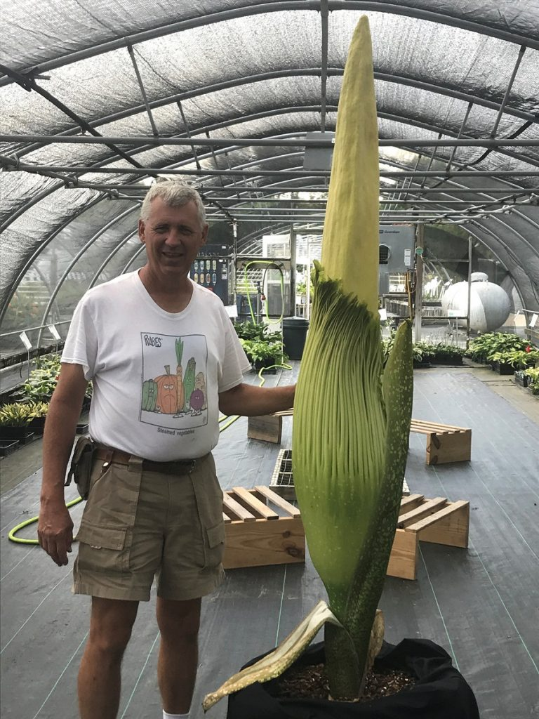 Tony Avent with a corpse flower. Source: Plant Delights Nursery/Juniper Level Botanic Garden, Raleigh, NC