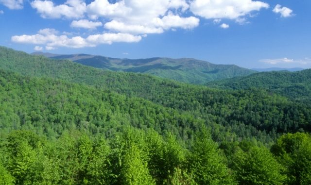 Part of the Nantahala National Forest, overseen by the US Forest Service. Source: fs.usda.gov