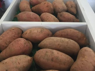 Local produce at a NC farmers market. Photo: Kay Whatley