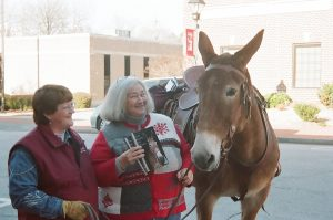 The author with Shannon Hoffman and Sadie Mae, the Book of Mules' cover mule. Source: Donna Campbell Smith