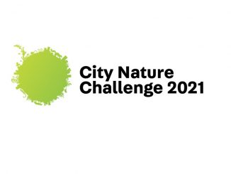 City Nature Challenge 2021 logo. Source: NC Museum of Natural Sciences