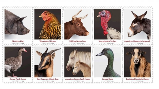 Heritage Breeds Forever stamps to be dedicated by the US Postal Service on May 17, 2021. Source: USPS