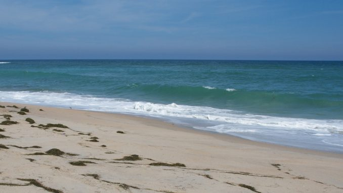 Cape Hatteras National Seashore, Ocean and Beach. Source: National Park Service