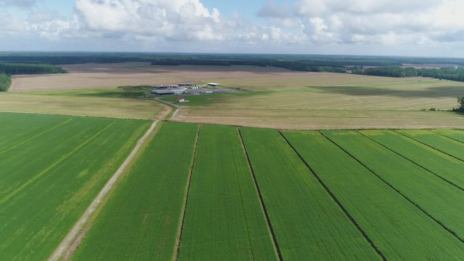 4,528 acres of Pamlico County, NC farmland acquired by Promised Land Opportunity Zone Farms I, LLC. Source: Murray Wise Associates LLC/PRnewswire